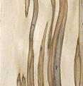 Стеновые панели Клен Гусано
