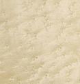 Стеновые панели Клен птичий глаз