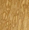Стеновые панели Эвкалипт помеле
