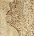 Стеновые панели Ясень оливковый корень